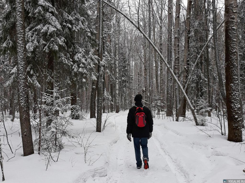 прогулка по зимнему лесу в Сарове