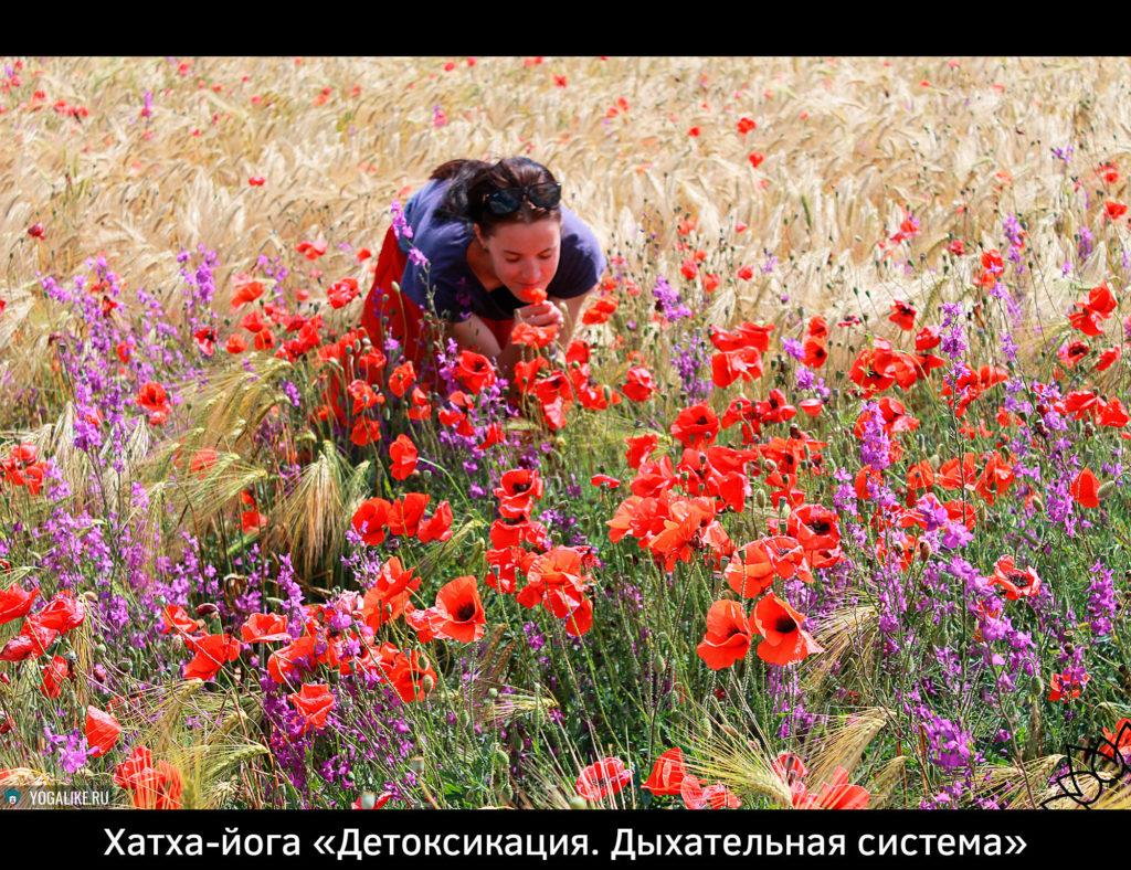 Здоровые лёгкие в Павшинской Пойме, Красногорск. Анонс занятия